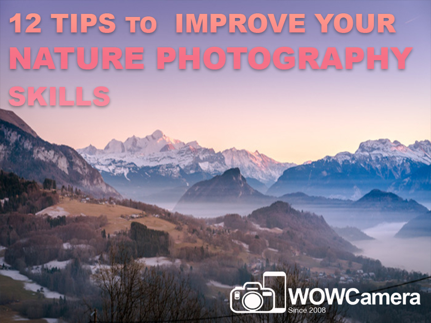 12 Tips to Improve Your Nature Photography Skills